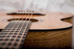 Malone Guitars Single Luthier spruce and black limba
