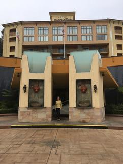 Lisa hotel.png