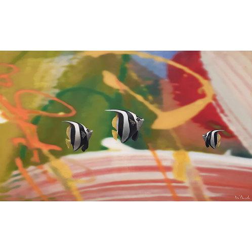 Catello D'Amato - Wimple fish - Exclusive Galleria Papier