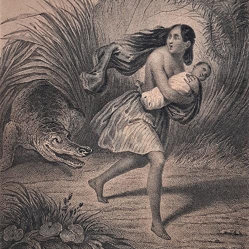 Chateaubriand il viaggio, Les Natchez incisione di Lefevre del 1842 Galleria Papier