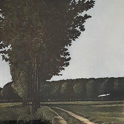 Paesaggio - Masi