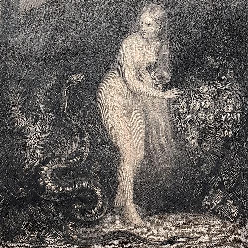 Chateaubriand il viaggio, Le Paradis Perdu incisione di Lecomte del 1842 Galleria Papier