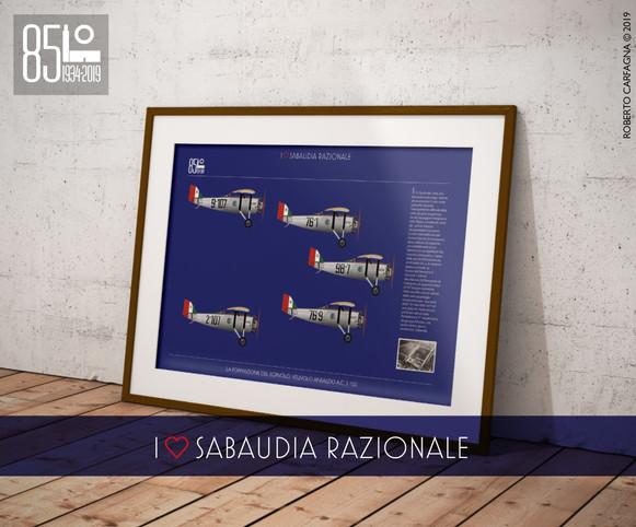 La formazione del sorvolo - Velivolo Ansaldo A.C. 3 150
