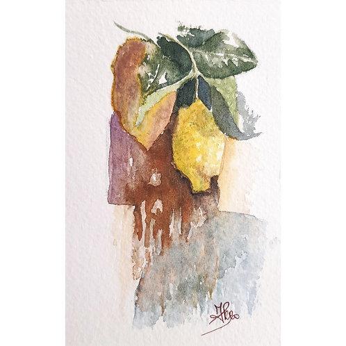 Federica Peco - Limoni - Acquerello su carta preparata - Exclusive Galleria Papier