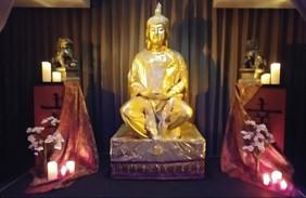 Unique Living Statues