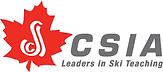 logo CASI.PNG