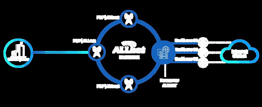 ilustração do backbone ALLnet