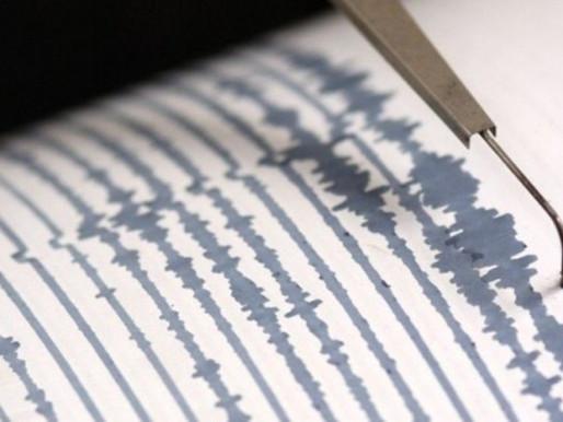 Un sismo de magnitud 7.7 sacude el Pacífico Sur con alerta de tsunami