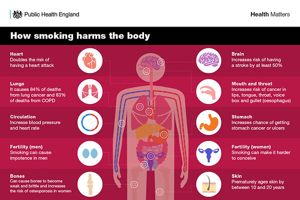 How Smoking Harms The Body.jpg