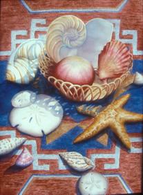 Seashells on Rug