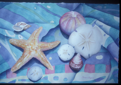 Shells on Beach Towel