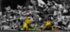 frogs-1413787_960_720.jpg