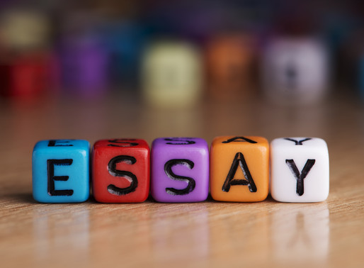 College Application Essay: Case Study with a Top- 5-School-Standard Essay Example