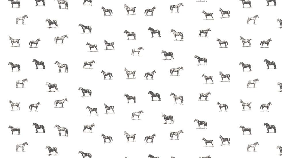 horses Pattern.jpg
