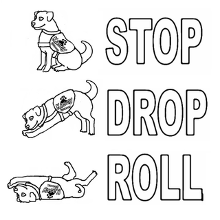 STOP DROP ROLL.png