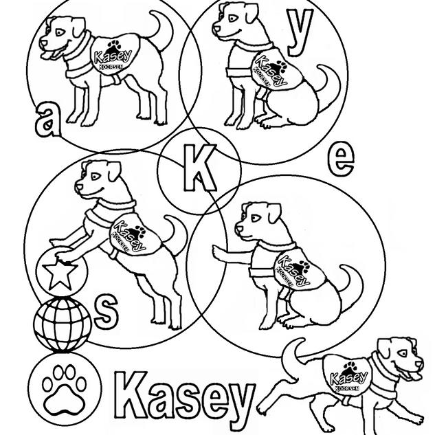 kasey studies.png