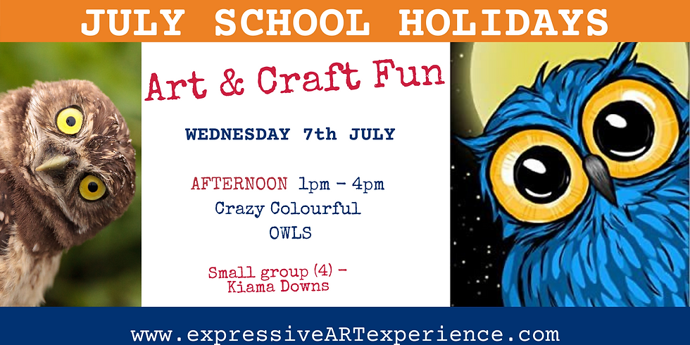 IMAGINATION - CRAZY OWLS - 9+yrs Wednesday AFTERNOON 7th JULY