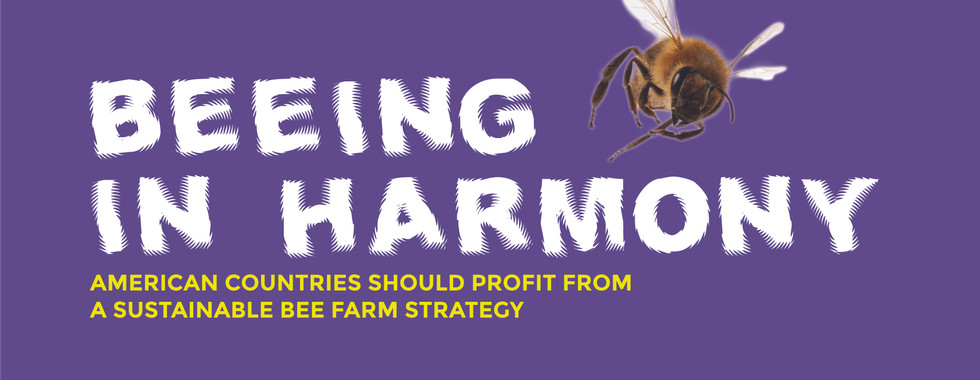 Beeing in Harmony Infographic