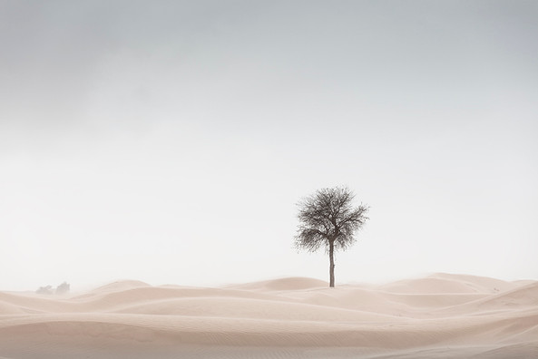 Sand Blasted.jpg