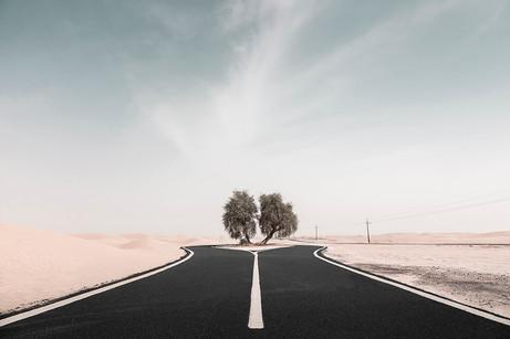 Desert Road.jpg