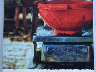 """La mia foto """"La Fuga del Polpo"""" diventa copertina del romanzo """"Le Geōlier"""" della"""