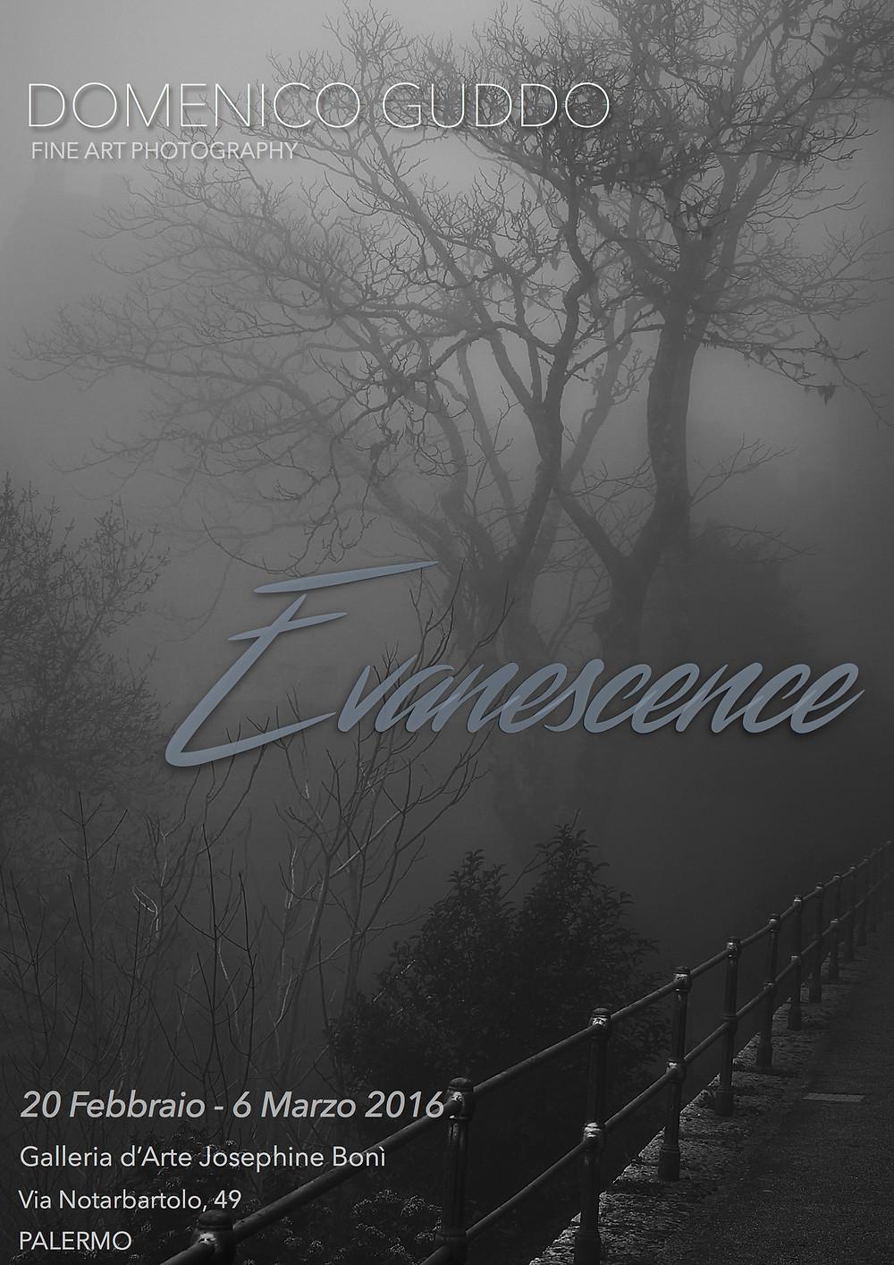 """""""Evanescence"""" ci introduce in una dimensione  che va oltre la realtà esperibile con i sensi, caratterizzata da  un'atmosfera mistica, talvolta angosciante, pregna di valenze simboliche. Tutto ciò che è evanescente, è indistinto e inderminato,  rappresenta quella zona d'ombra che simboleggia l'incertezza, una sorta di dimensione  intermedia posta tra il reale e l'irreale. Da questo punto di vista la fotografia, abbandona la sua dimensione fisica per trasportarci in un viaggio extrasensoriale, attraverso un percorso che perdendosi nella nebbia si dilegua, assumendo contorni sempre più sfumati, evanescenti...un viaggio emozionale alla ricerca di se stessi, che comporta il perdersi e il ritrovarsi in quella nebbia, che rendendo  tutto più difficile da distinguere e decodificare,  rievoca ancestrali paure, l'insicurezza, l'instabilità, di ciò che deve ancora assumere dei contorni definiti o un aspetto concreto e reale. Un luogo senza confini verso cui l'artista volge il proprio obiettivo, esperendo un viaggio verso  un nulla indistinto in cui dissolvere se stesso, alla ricerca di punti di riferimento. La nebbia in tal senso si carica di una ulteriore valenza simbolica rappresentando un varco, un passaggio propedeutico ad un processo che attraverso il mutamento e la trasformazione, cerca di attingere alla verità più profonda, mentre la realtà cambia i suoi confini, si svela,     lasciando talvolta penetrare la luce, che strappa il mondo agli abissi del buio e delinea i contorni, agevolando la differenziazione e il processo di conoscenza... L' artista attraverso i suoi scatti e la sua sensibilità delinea dunque i tratti della dimora del nostro inconscio, un luogo di confine, di fusione e confusione, in cui dialoga il reale e il non reale, la certezza e l'indecisione...un luogo di cui riecheggia dentro di noi, sospeso in una dimensione onirica,  soltanto un ricordo evanescente..."""