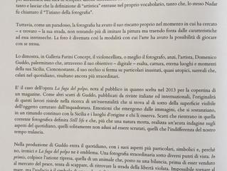 Il critico d'arte Azzurra Immediato parla delle fotografie di Domenico Guddo