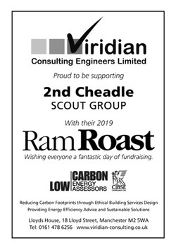 Viridian Consulting 2019