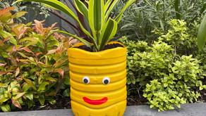 PlasticFreeJuly: Planter