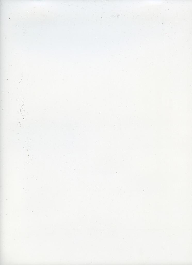 img029.JPG
