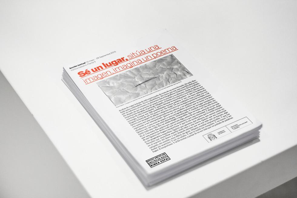 05_institutional_critic_textual_conceptu