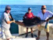 Fish#1-December2019.jpg