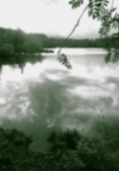 Tranquil lake scene for Counselling Essex
