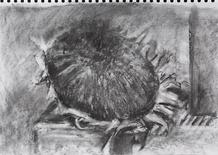 sketch290321(2).png