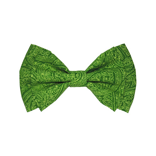 Green Paisley: S