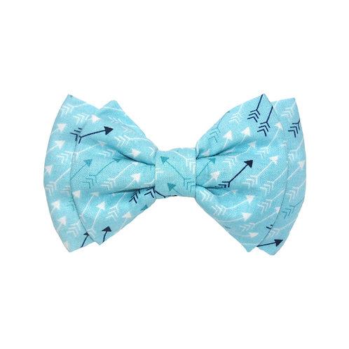 Blue Arrows: L