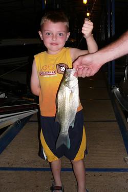 Great Night Fishing off the Dock