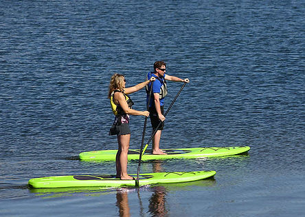 paddle boards 0.jpg