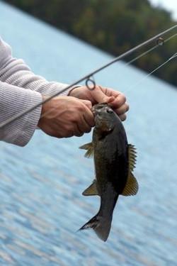 Fishing Lake Bridgeport