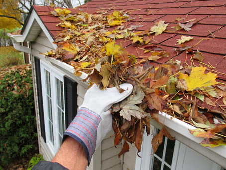 5 SIGNS YOU SHOULD CLEAN YOUR GUTTERS