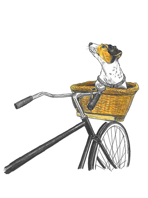 Dog In Basket - A3