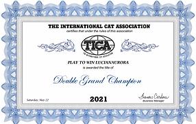 DGC2021.PNG