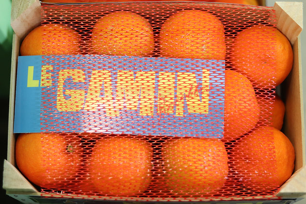 Orange amère Gamin | Espagne | 1kg