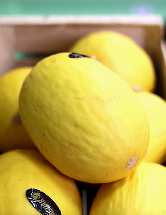 Melon jaune | Brésil | 1 pièce