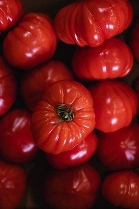Tomate ancienne Cœur de Bœuf | France | 1 Kg