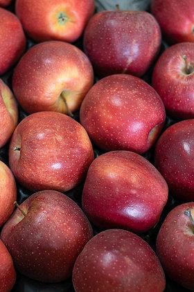 Pomme gala lité | France | 1kg