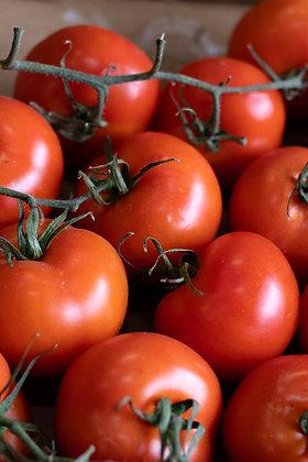 Tomate grappe | France | 1 kg