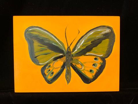 """""""Butterfly"""" - Suzanne Farney"""