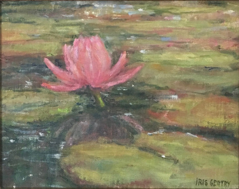 """""""Single Lotus"""" - Iris Gentry"""