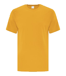 ATC1000_Form_Front_Gold_012017